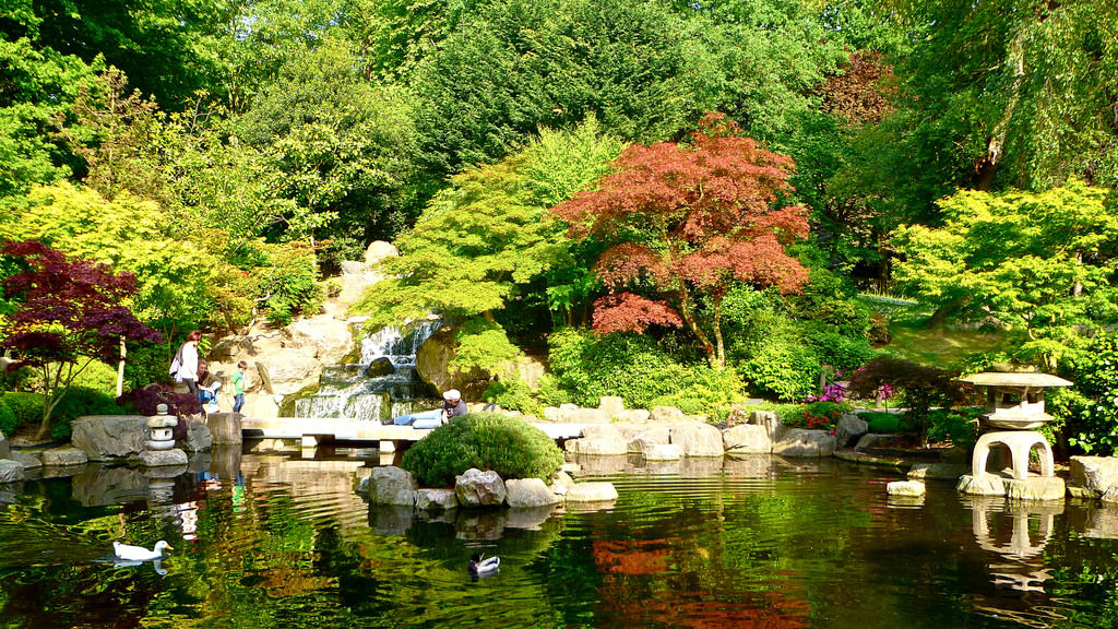 japanese_garden_holland_park
