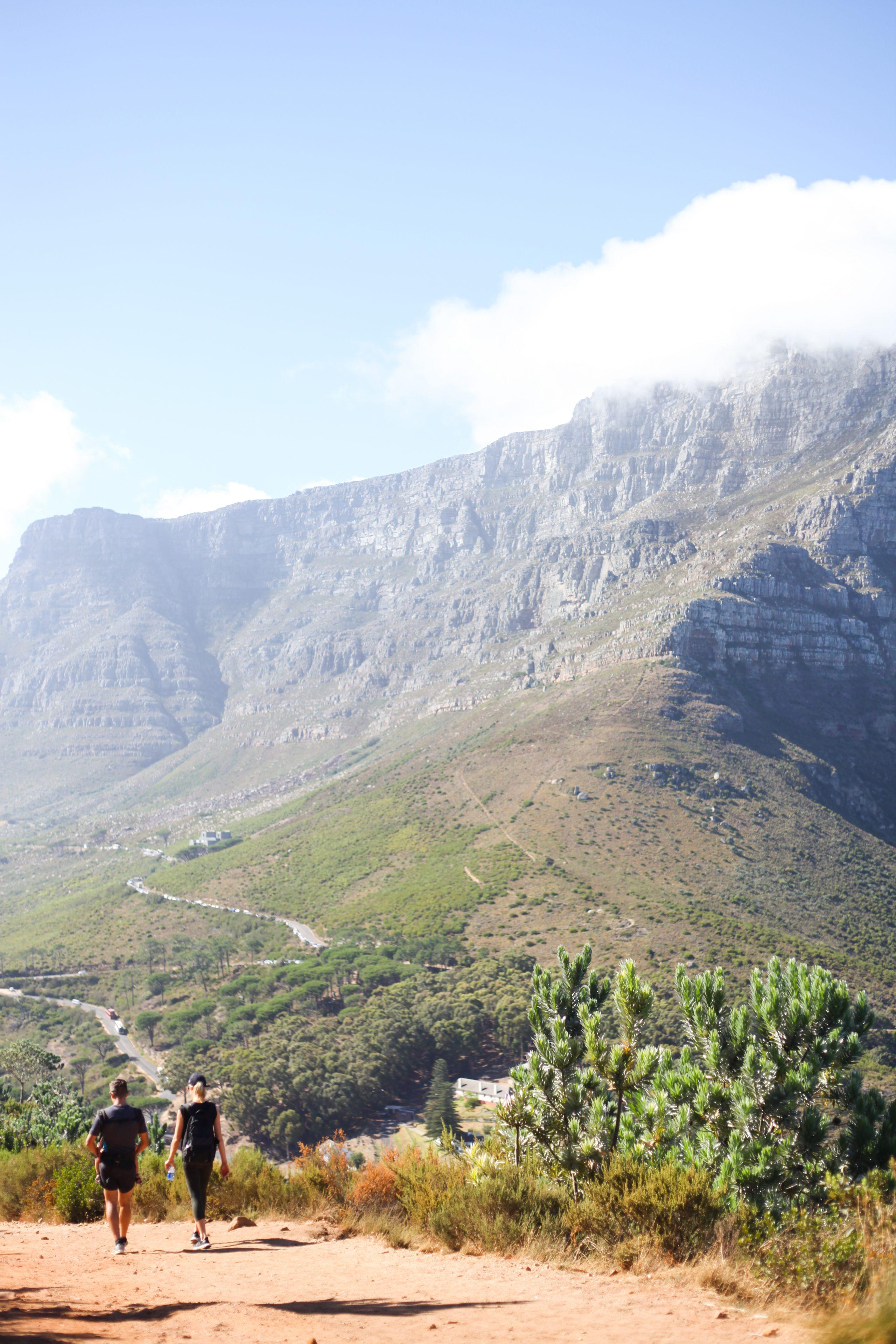 Poppy Cape Town_-36