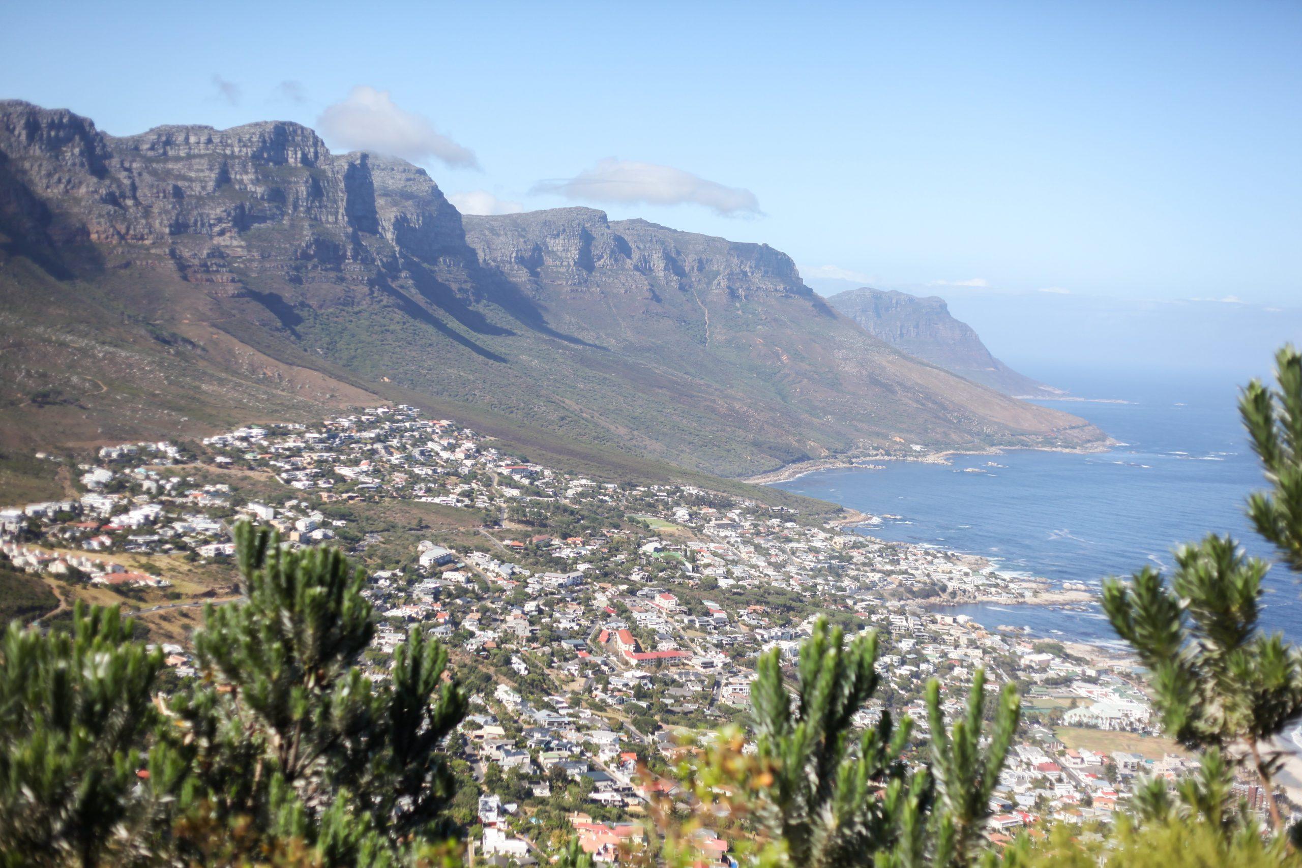 Poppy Cape Town_-37