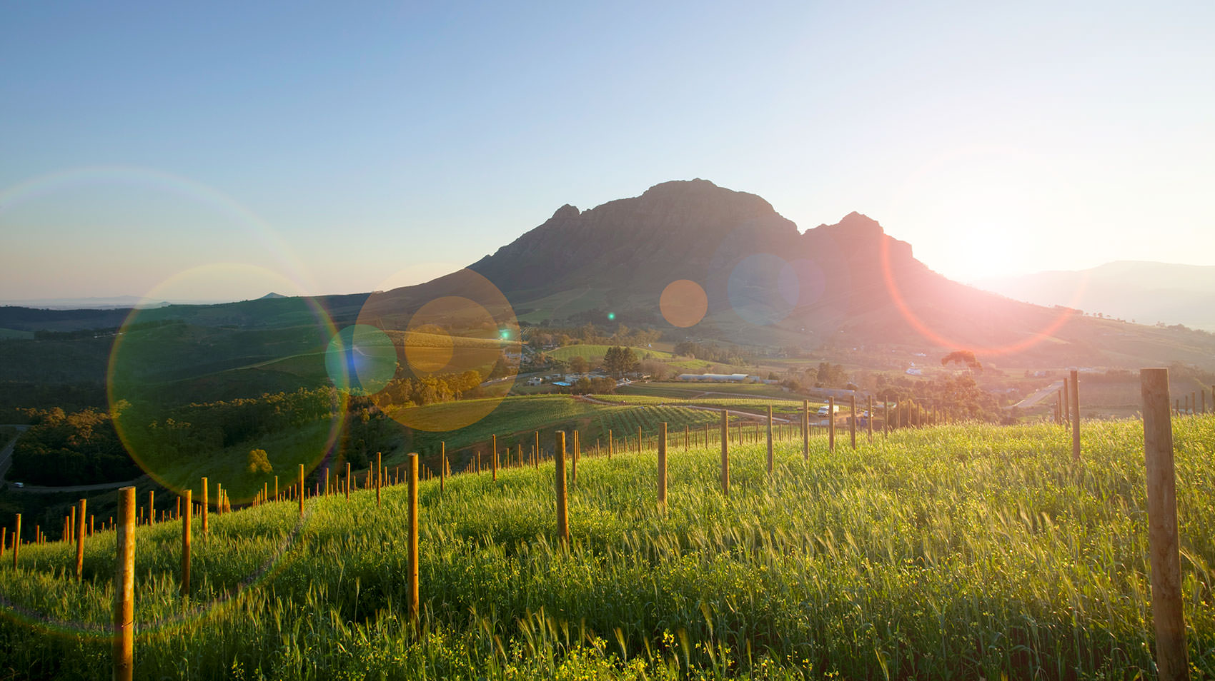 sunrise_over_delaire_graff_estate