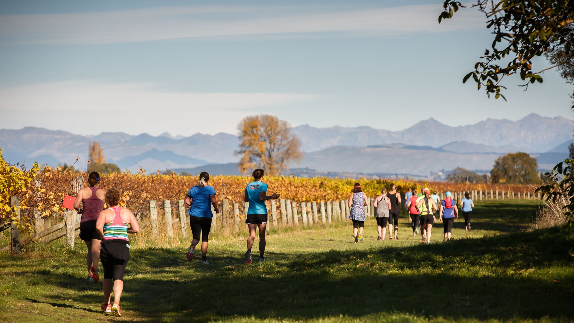 St Clair Vineyard Marathon